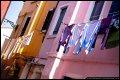 Image 50/80 : DSCF0864_p.jpg